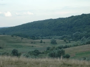 49_parallel_2009-08-07_029