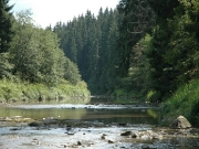 49_parallel_2009-08-09_031
