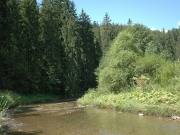 49_parallel_2009-08-09_034