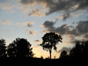 49_parallel_2009-08-10_023